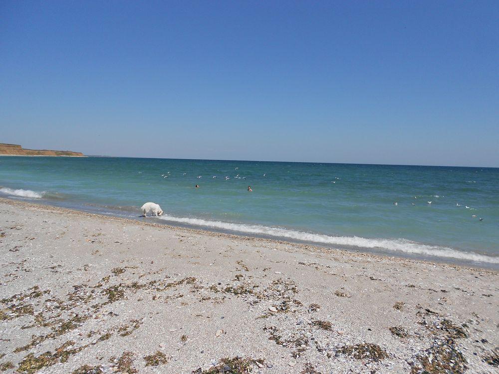 Shabla Beach