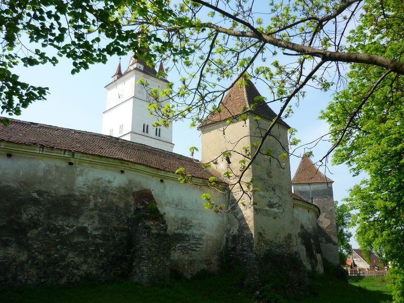 view from the outside of Harman Fortified Church