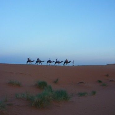 A night in the Sahara