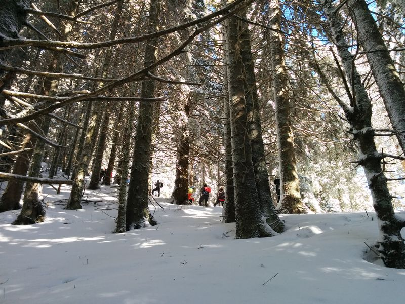 winter hike in the Ciucas mountains